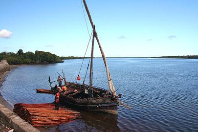 Fotoalbum von Malindi.info - Ausflug nach Lamu Island 2009[ Foto 3 von 124 ]