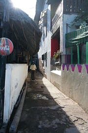 Fotoalbum von Malindi.info - Ausflug nach Lamu Island 2009[ Foto 9 von 124 ]