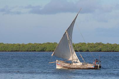 Fotoalbum von Malindi.info - Ausflug nach Lamu Island 2009[ Foto 31 von 124 ]