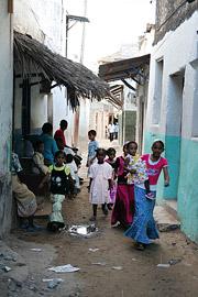 Fotoalbum von Malindi.info - Ausflug nach Lamu Island 2009[ Foto 43 von 124 ]
