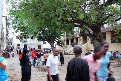Fotoalbum von Malindi.info - Ausflug nach Lamu Island 2009[ Foto 55 von 124 ]