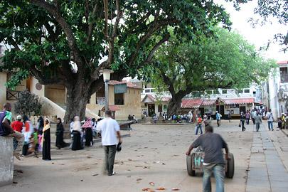 Fotoalbum von Malindi.info - Ausflug nach Lamu Island 2009[ Foto 58 von 124 ]