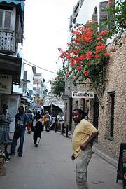 Fotoalbum von Malindi.info - Ausflug nach Lamu Island 2009[ Foto 61 von 124 ]