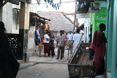 Fotoalbum von Malindi.info - Ausflug nach Lamu Island 2009[ Foto 64 von 124 ]