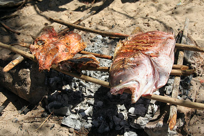 Fotoalbum von Malindi.info - Ausflug nach Lamu Island 2009[ Foto 107 von 124 ]