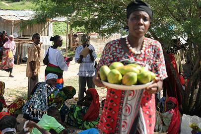 Fotoalbum von Malindi.info - Ausflug nach Lamu Island 2009[ Foto 119 von 124 ]