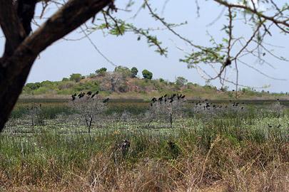 Fotoalbum von Malindi.info - LMagiro Farm und Lake Chem Chem 2009[ Foto 38 von 61 ]
