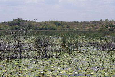 Fotoalbum von Malindi.info - LMagiro Farm und Lake Chem Chem 2009[ Foto 39 von 61 ]