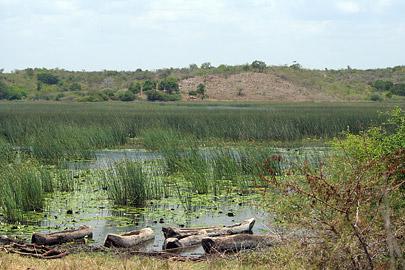 Fotoalbum von Malindi.info - LMagiro Farm und Lake Chem Chem 2009[ Foto 40 von 61 ]