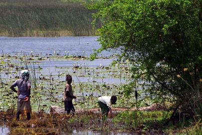 Fotoalbum von Malindi.info - LMagiro Farm und Lake Chem Chem 2009[ Foto 45 von 61 ]