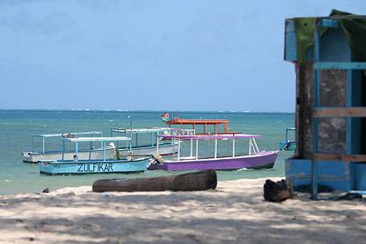Fotoalbum von Malindi.info - Malindi Marine Park im September 2010[ Foto 24 von 43 ]