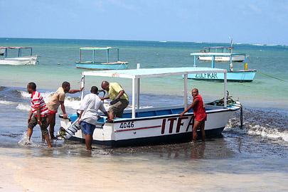 Fotoalbum von Malindi.info - Malindi Marine Park im September 2010[ Foto 27 von 43 ]