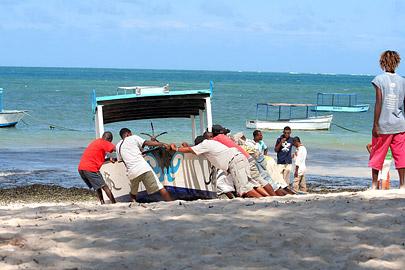 Fotoalbum von Malindi.info - Malindi Marine Park im September 2010[ Foto 34 von 43 ]