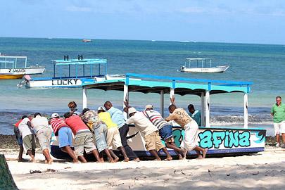 Fotoalbum von Malindi.info - Malindi Marine Park im September 2010[ Foto 35 von 43 ]