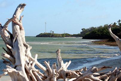 Fotoalbum von Malindi.info - Malindi Marine Park im September 2010[ Foto 38 von 43 ]
