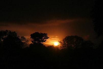 Fotoalbum von Malindi.info - Safari Tsavo East/West 2010[ Foto 1 von 145 ]