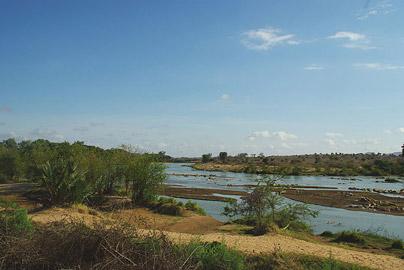Fotoalbum von Malindi.info - Safari Tsavo East/West 2010[ Foto 12 von 145 ]