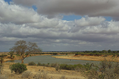 Fotoalbum von Malindi.info - Safari Tsavo East/West 2010[ Foto 13 von 145 ]