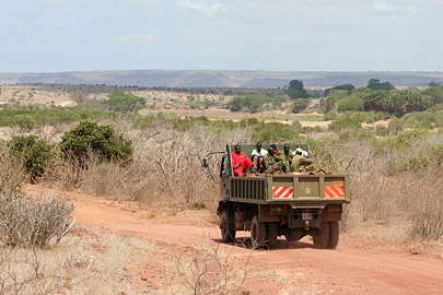 Fotoalbum von Malindi.info - Safari Tsavo East/West 2010[ Foto 21 von 145 ]