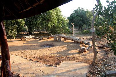 Fotoalbum von Malindi.info - Safari Tsavo East/West 2010[ Foto 62 von 145 ]