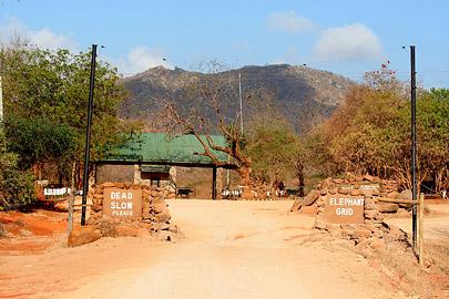 Fotoalbum von Malindi.info - Safari Tsavo East/West 2010[ Foto 67 von 145 ]