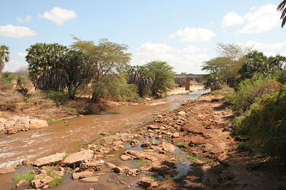 Fotoalbum von Malindi.info - Safari Tsavo East/West 2010[ Foto 73 von 145 ]