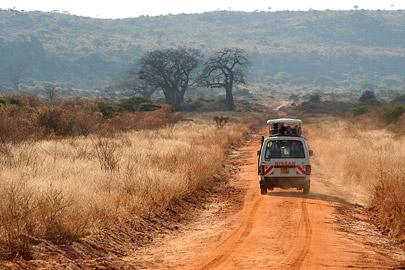 Fotoalbum von Malindi.info - Safari Tsavo East/West 2010[ Foto 112 von 145 ]