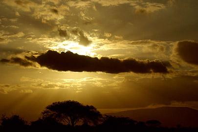 Fotoalbum von Malindi.info - Safari Tsavo East/West 2010[ Foto 145 von 145 ]