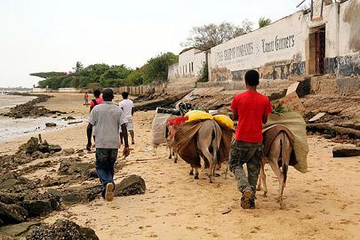 Fotoalbum von Malindi.info - Weihnachten 2010 in Lamu[ Foto 2 von 80 ]