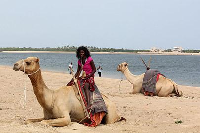 Fotoalbum von Malindi.info - Weihnachten 2010 in Lamu[ Foto 25 von 80 ]
