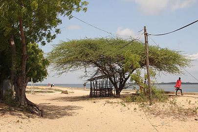 Fotoalbum von Malindi.info - Weihnachten 2010 in Lamu[ Foto 53 von 80 ]