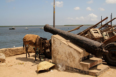 Fotoalbum von Malindi.info - Weihnachten 2010 in Lamu[ Foto 68 von 80 ]