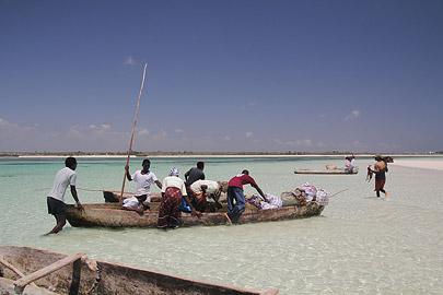 Fotoalbum von Malindi.info - Impressionen Malindi Januar 2011[ Foto 58 von 76 ]