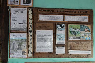 Fotoalbum von Malindi.info - Malindi & Mida Creek November 2011[ Foto 72 von 124 ]