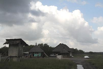 Fotoalbum von Malindi.info - Malindi & Mida Creek November 2011[ Foto 74 von 124 ]