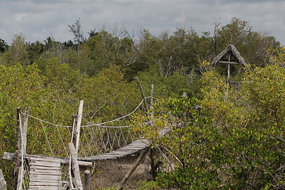 Fotoalbum von Malindi.info - Malindi & Mida Creek November 2011[ Foto 96 von 124 ]