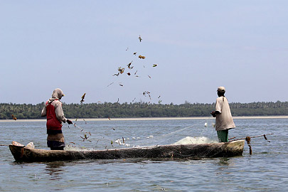 Fotoalbum von Malindi.info - Malindi & Mida Creek November 2011[ Foto 122 von 124 ]