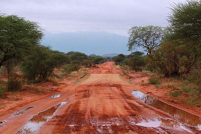 Fotoalbum von Malindi.info - Safari Tsavo East/West 2012[ Foto 21 von 98 ]