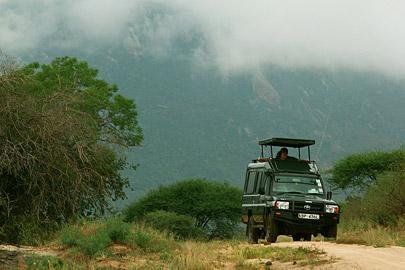 Fotoalbum von Malindi.info - Safari Tsavo East/West 2012[ Foto 61 von 98 ]