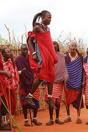 Fotoalbum von Malindi.info - Safari Tsavo East/West 2012[ Foto 94 von 98 ]