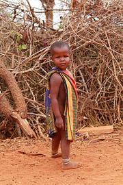 Fotoalbum von Malindi.info - Safari Tsavo East/West 2012[ Foto 98 von 98 ]