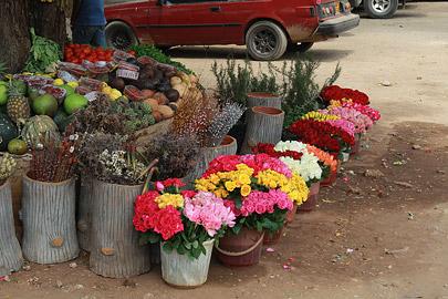 Fotoalbum von Malindi.info - Impressionen von Malindi 08/2012[ Foto 31 von 90 ]