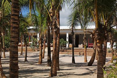 Fotoalbum von Malindi.info - Malindi & Watamu Dezember 2012[ Foto 11 von 109 ]