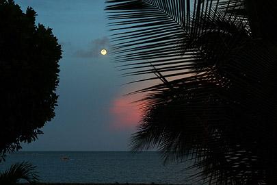 Fotoalbum von Malindi.info - Malindi & Watamu Dezember 2012[ Foto 33 von 109 ]