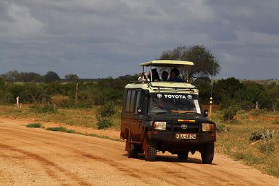 Fotoalbum von Malindi.info - Safari Tsavo/East und Amboseli Dezember 2012[ Foto 6 von 145 ]