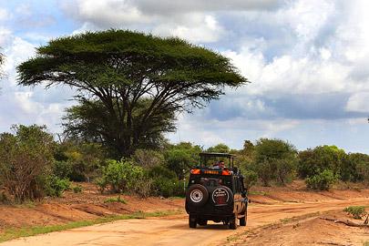 Fotoalbum von Malindi.info - Safari Tsavo/East und Amboseli Dezember 2012[ Foto 17 von 145 ]