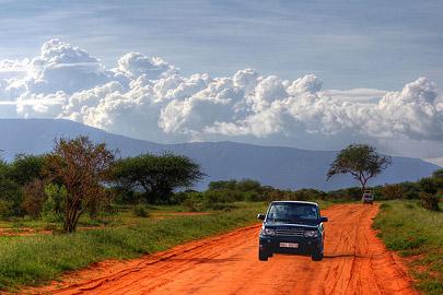 Fotoalbum von Malindi.info - Safari Tsavo/East und Amboseli Dezember 2012[ Foto 36 von 145 ]