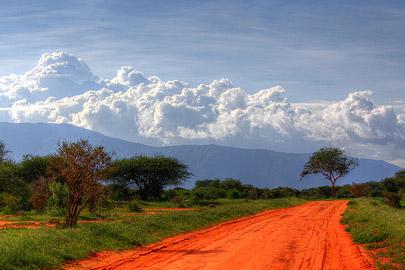 Fotoalbum von Malindi.info - Safari Tsavo/East und Amboseli Dezember 2012[ Foto 37 von 145 ]