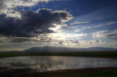 Fotoalbum von Malindi.info - Safari Tsavo/East und Amboseli Dezember 2012[ Foto 42 von 145 ]