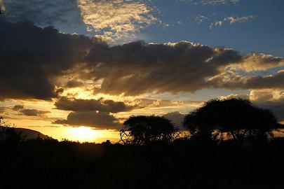 Fotoalbum von Malindi.info - Safari Tsavo/East und Amboseli Dezember 2012[ Foto 50 von 145 ]
